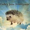 @dobry_jezu_anaszpanie:junta.pl