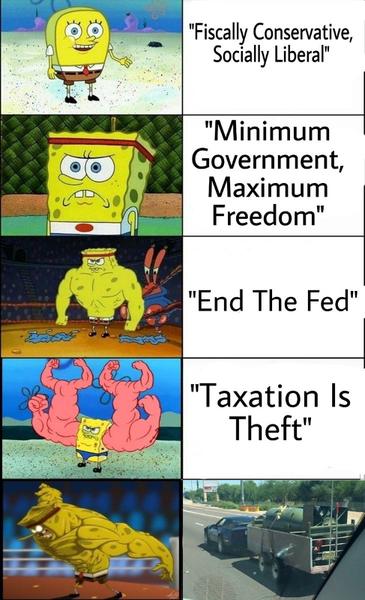 libertarian-levels.png