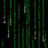 @radine:matrix.org