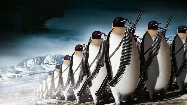 penguin with a gun.jpg
