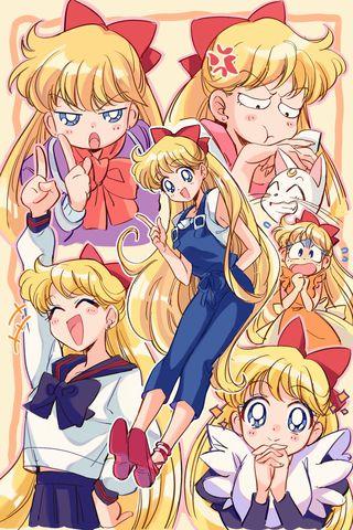 Bishoujo.Senshi.Sailor.Moon.full.3222028.jpg